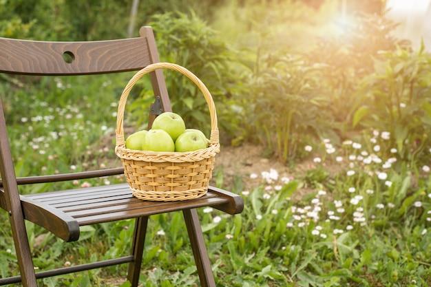 Maçã verde, em, cesta vime, ligado, cadeira jardim, grama verde, tempo colheita, sol, flare