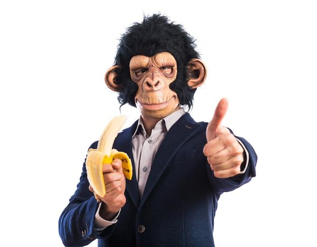 Macaco homem comendo uma banana