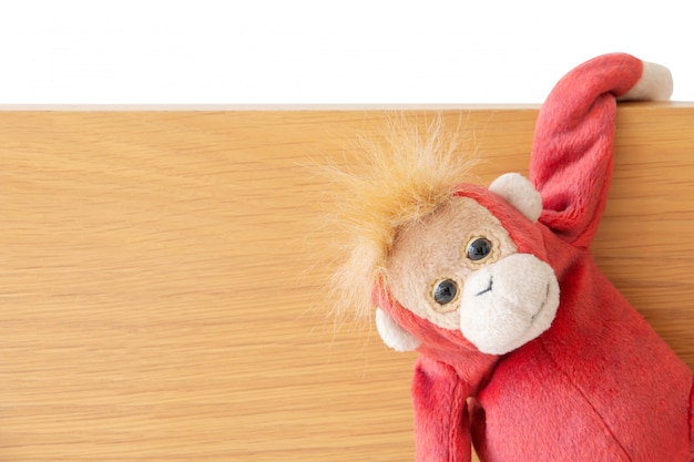 Macaco safado está pendurado na placa de madeira
