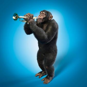 Macaco tocando trompete, fundo azul. ilustração 3d
