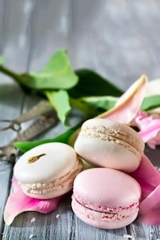 Macarons de baunilha doce francês