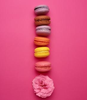 Macarons multicoloridos doces com creme e um botão de rosa cor de rosa