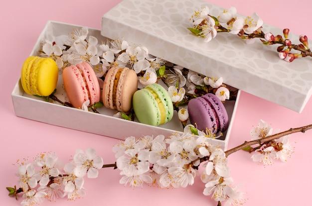 Macaroons frescos em uma caixa de presente com flores de árvore de alperce em rosa pastel