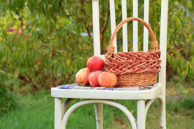 Maçãs de close-up e cesta de vime em uma cadeira branca de estilo rústico no jardim com fundo verde natural.
