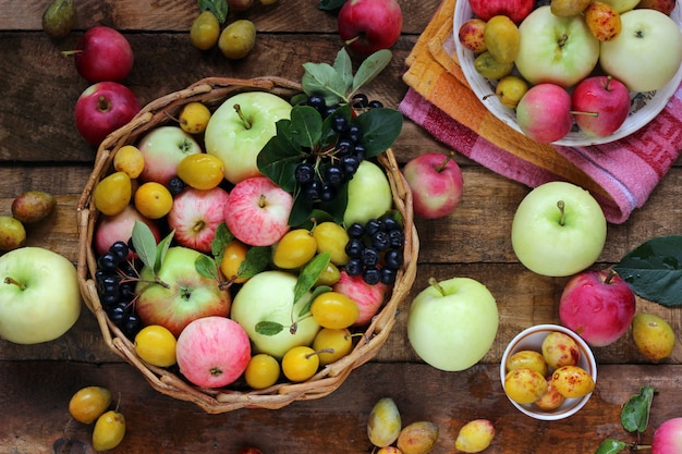 Maçãs de diferentes variedades, ameixa amarela e chokeberry na mesa