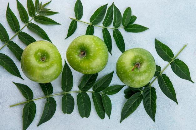 Maçãs de vista superior verde com galhos de folhas