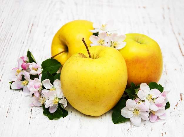 Maçãs e flores de macieira