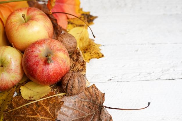 Maçãs e folhas de outono
