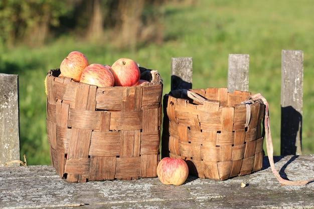 Maçãs em uma cesta de vime velho retrô vintage estilo rústico verão outono