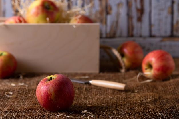 Maçãs maduras na serapilheira e em uma cesta com fundo de madeira. estilo rústico, close-up.