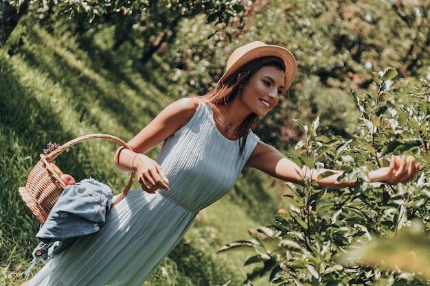 Maçãs saborosas. mulher jovem e atraente colhendo maçãs e sorrindo em pé no jardim