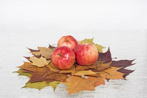 Maçãs vermelhas em folhas de outono.
