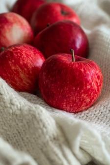 Maçãs vermelhas em uma blusa de malha branca. cena caseira aconchegante e tranquila. colheita, colheita, colheita. outono de conceito