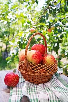 Maçãs vermelhas frescas em uma cesta em uma mesa em um jardim de verão