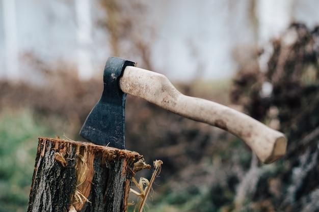 Machado a natureza colhendo lenha para uma fogueira na floresta