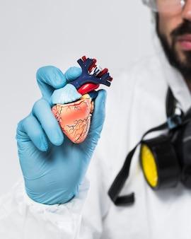 Macho adulto close-up, segurando uma amostra de coração