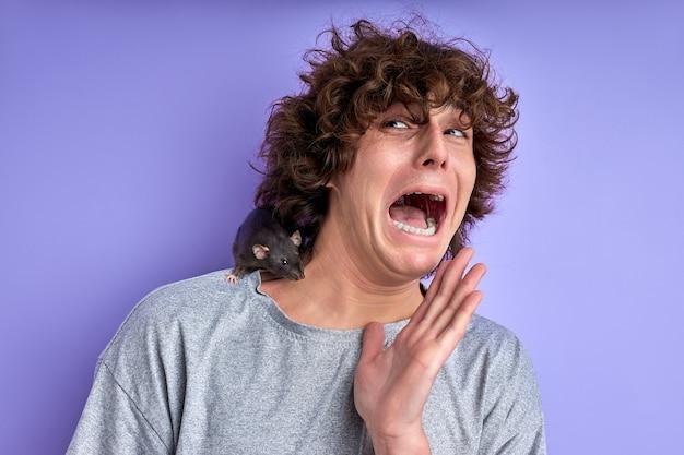 Macho grita com medo de rato decorativo isolado sobre fundo roxo, macho está sofrendo de musofobia