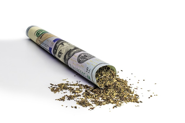 Maconha em uma nota de cem dólares. conceito de negócio de cannabis. maconha e dinheiro. drogas.