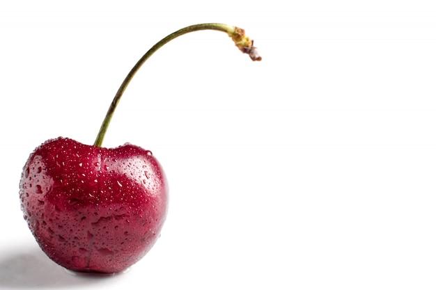 Macro de cereja vermelha berry com gotas de água no fundo branco