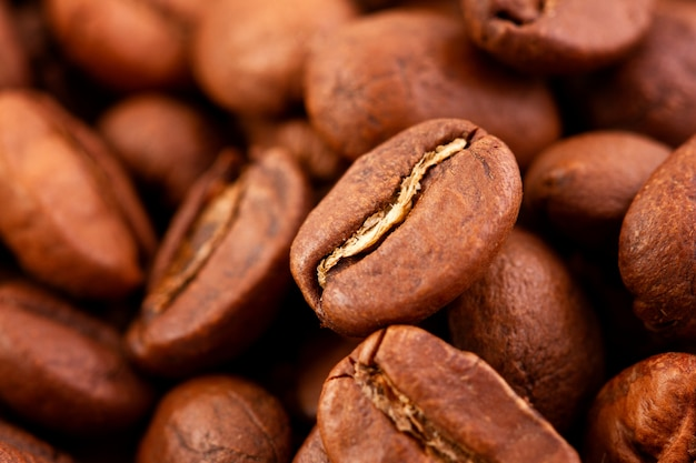 Macrofotografia de grãos de café