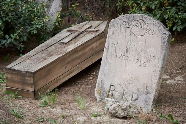 Madeira e pedra esculpida no chão coberto