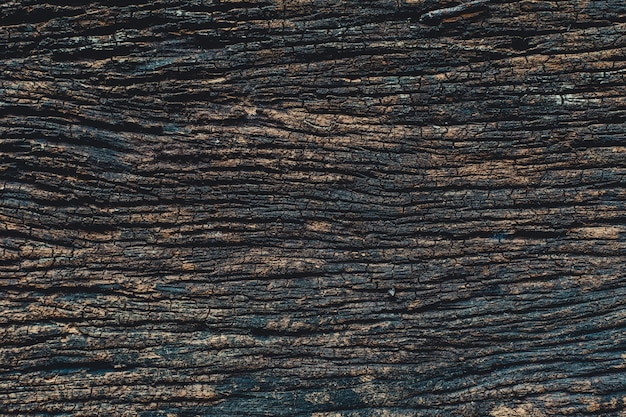 Madeira velha, detalhes da natureza real de padrão de textura de painel de madeira escura para o fundo