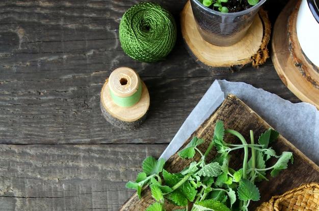 Madeira verde menta