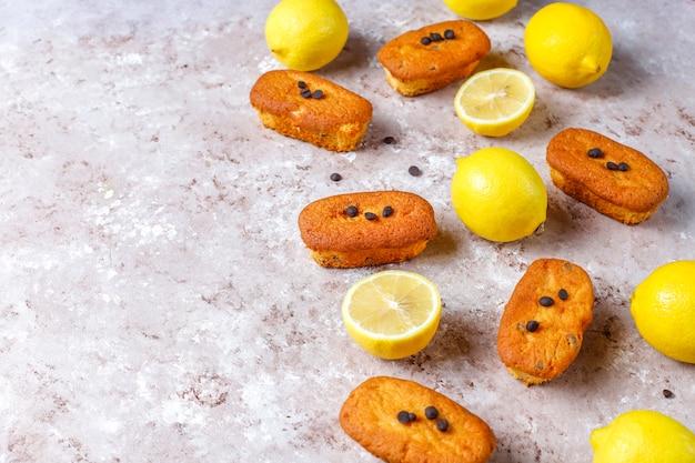 Madeleine - pequenos biscoitos caseiros franceses tradicionais com limão e pedaços de chocolate.