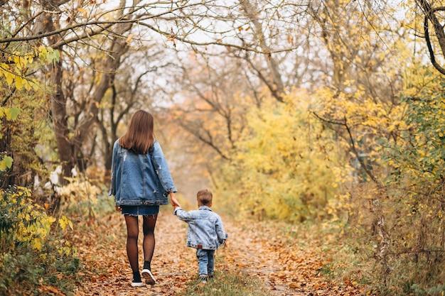 Mãe, com, dela, filho pequeno, em, outono, parque