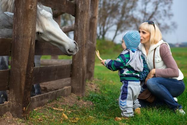 Mãe, com, dois anos, criança, alimento, cavalo