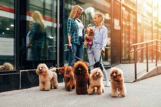 Mãe e filha desfrutando de passeio junto com seus poodles na rua da cidade.