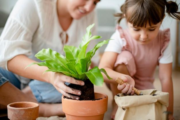 Mãe e filha envasamento de plantas diy em casa