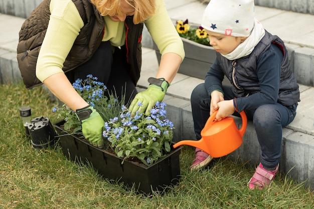 Mãe e filha passando tempo juntas na frente ou no quintal de casa, plantando flores, menina regando miosótis com regador, atraindo crianças para o dever de casa
