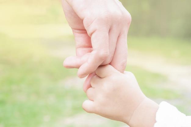 Mãe e filho mãos e manhã natureza