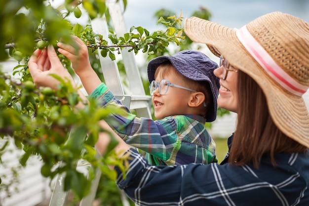Mãe e filho na árvore da escada, jardinagem no jardim dos fundos