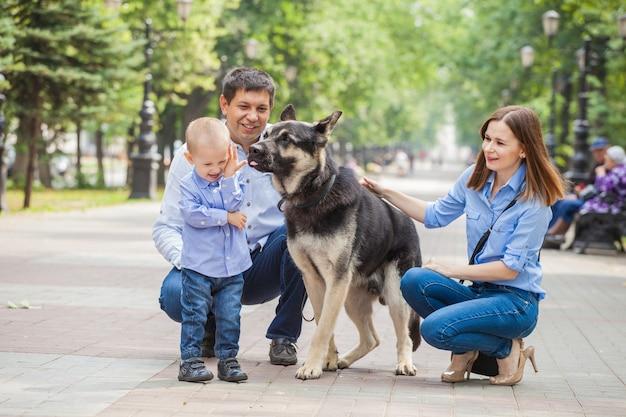 Mãe, pai e filho em uma caminhada com um cão pastor na cidade. o cachorro lambe o bebê