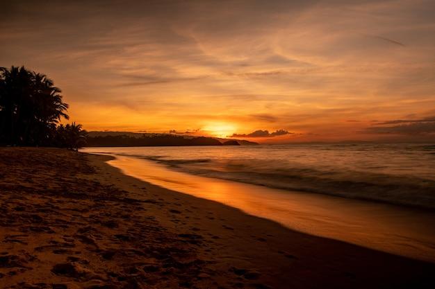 Magnífico cenário de uma praia com árvores e um mar ao pôr do sol