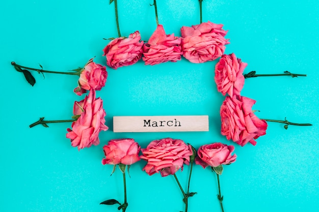Maio texto dentro de rosas frescas moldura com pano de fundo colorido