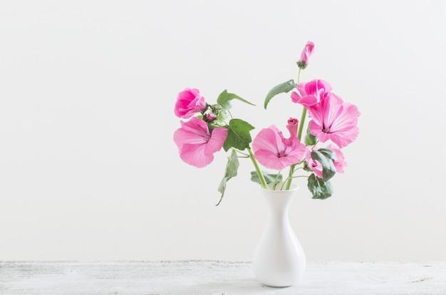 Malva em vaso branco