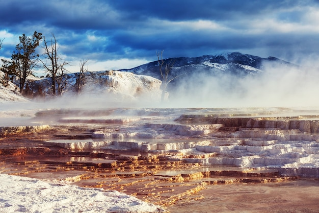 Mammoth hot springs em yellowstone np, eua