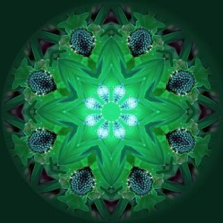 Mandala de luz de fundo