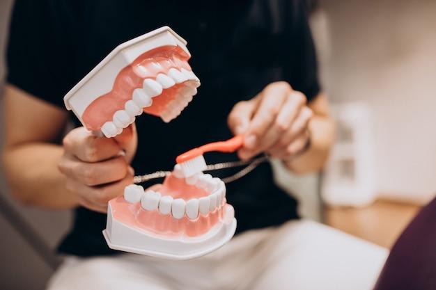 Mandíbula de plástico em clínica odontológica