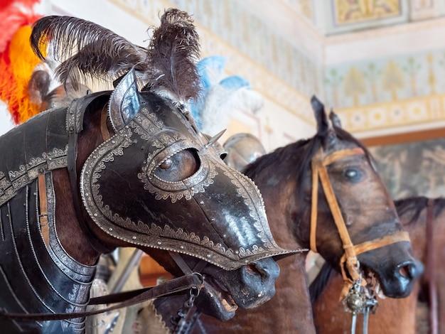 Manequim de cavaleiro cavalo, hermitage, o salão dos cavaleiros, close-up.
