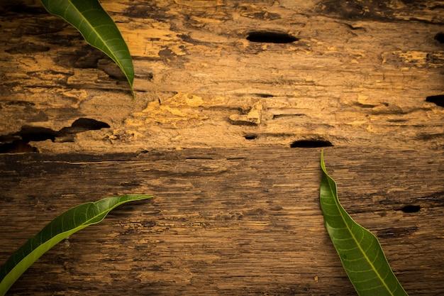 Manga em um fundo escuro de madeira