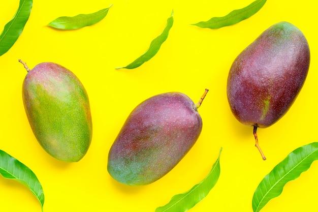 Manga, frutas tropicais com folhas sobre fundo amarelo.
