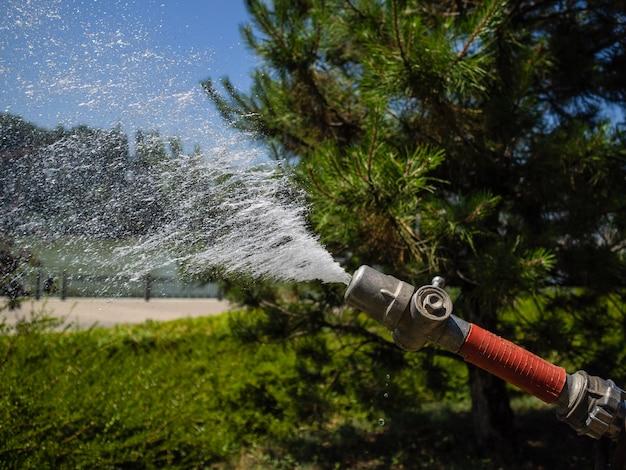 Mangueira de rega com forte pressão da água. jardineiro está regando o jardim com uma mangueira