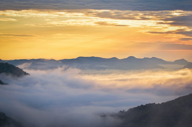 Manhã, cena, amanhecer, paisagem, bonito, ligado, colina, com, nevoeiro, nebuloso, cobertura, floresta, e, montanha