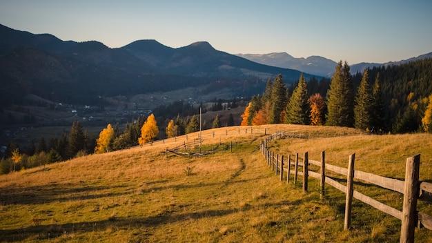 Manhã de nevoeiro nas montanhas no outono, frescor da natureza e árvores amarelas