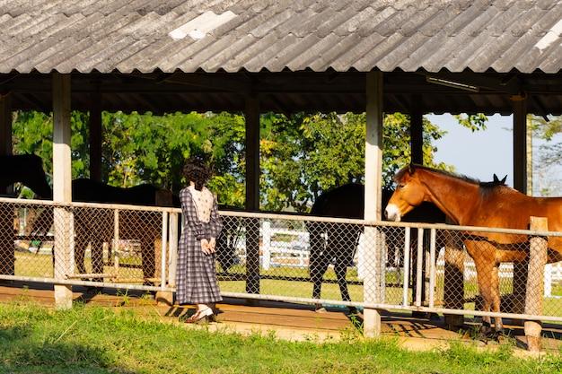 Manhã fêmea que verifica os dentes do cavalo ao estar no estábulo.