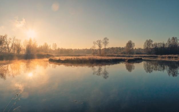 Manhã fria e ensolarada em um pântano nebuloso. foco suave.